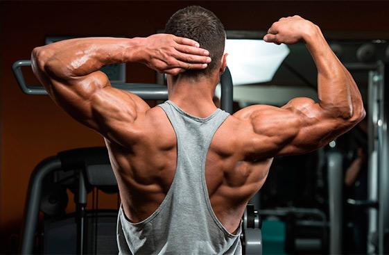 Как оптимизировать прирост сухих мышц?