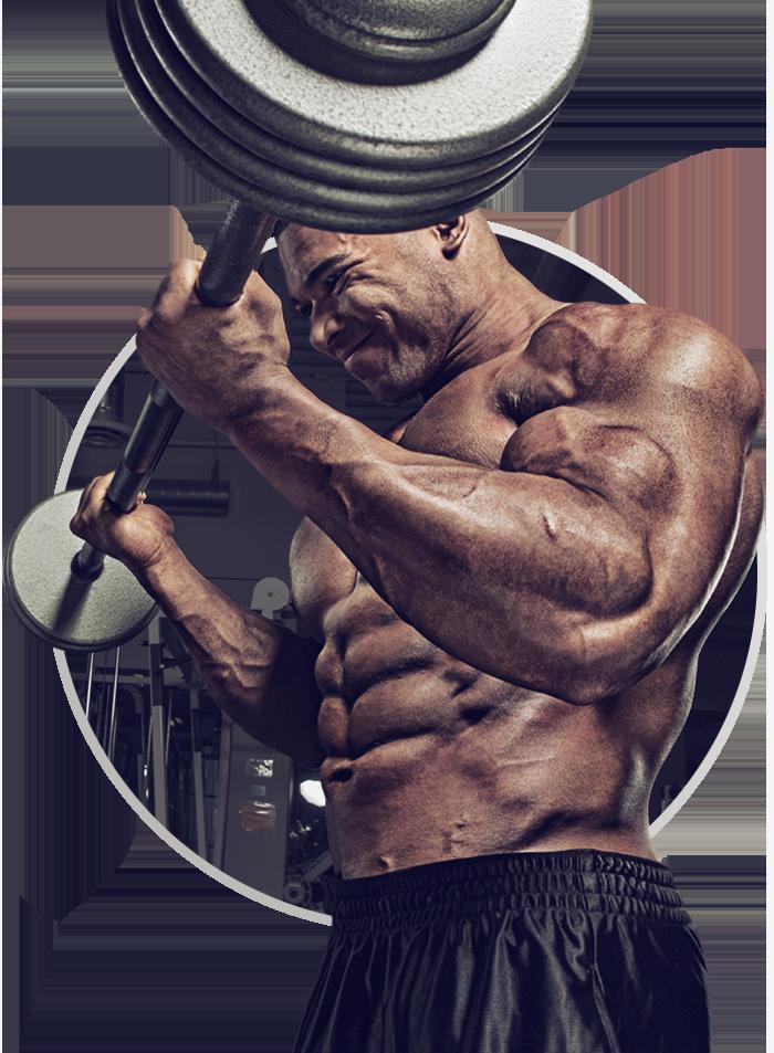 Белок или креатин для наращивания мышечной массы: что если мы объединим их?
